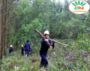 Bộ quần áo bảo hộ đi rừng Đẹp và Giá Rẻ đừng bỏ lỡ